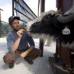 For his 150th job, Mike Rowe traveled to a Montana yak ranch.