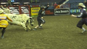 sgdi-mike-rowe-bullfighting