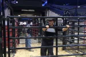 06bullfighting