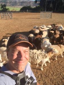 Mike Rowe - Shepherding - SGDI