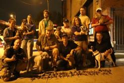 sgdi - mike rowe - rat terriers