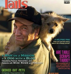 Tails Magazine: Just a Boy and His Dog