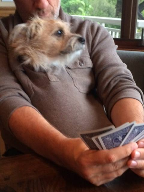 FWF - Mike Rowe, Freddy Playing the Cards You Get