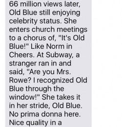 Texts From Mother: Old Blue One Year Later