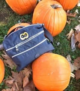 Old Blue - Pumpkin