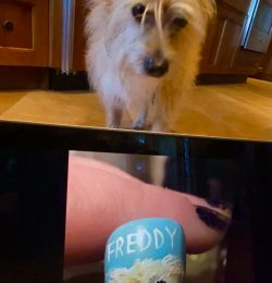 Fridays with Freddy: Teresa the Artistic Biped